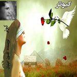 رمان کبوتر